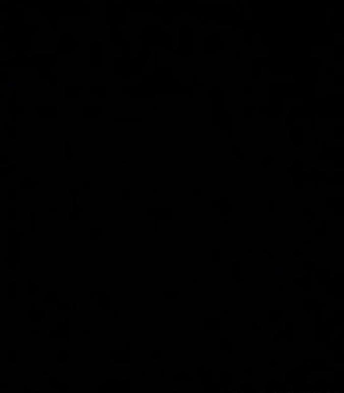 black-img3-carlos-e-miguel